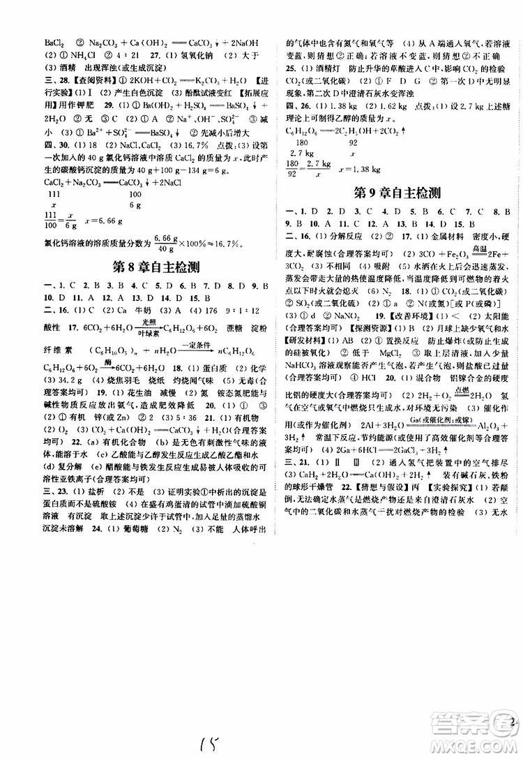 2019版通城学典课时作业本九年级下册化学沪教版参考答案