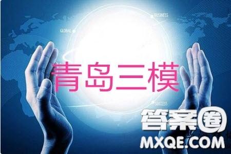 2019青岛市高三自主检测三模语文试题及参考答案