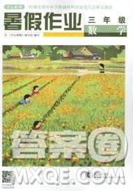 武汉出版社2019秋开心假期暑假作业三年级数学人教版答案