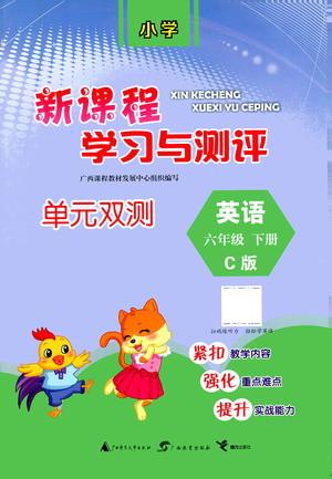 广西教育出版社2021新课程学习与测评单元双测英语六年级下册C版接力版答案